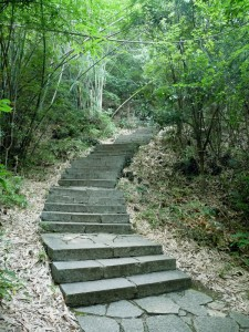 Escalier Colline Lune