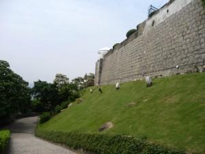 Fort Guia