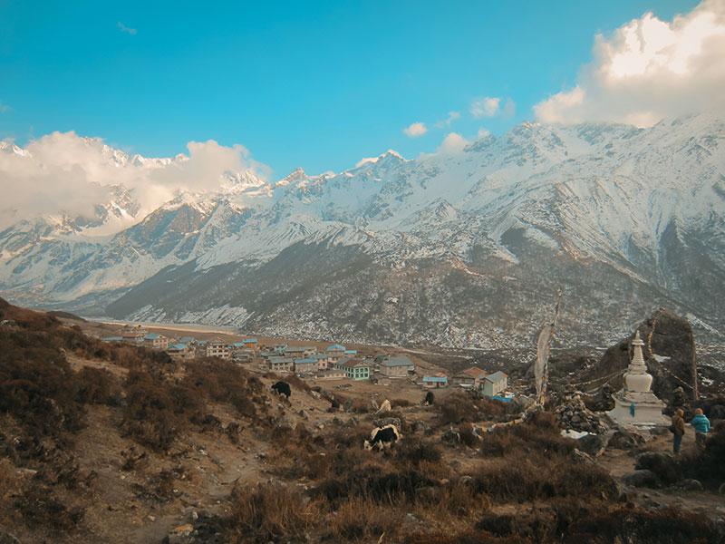 paysage langtang