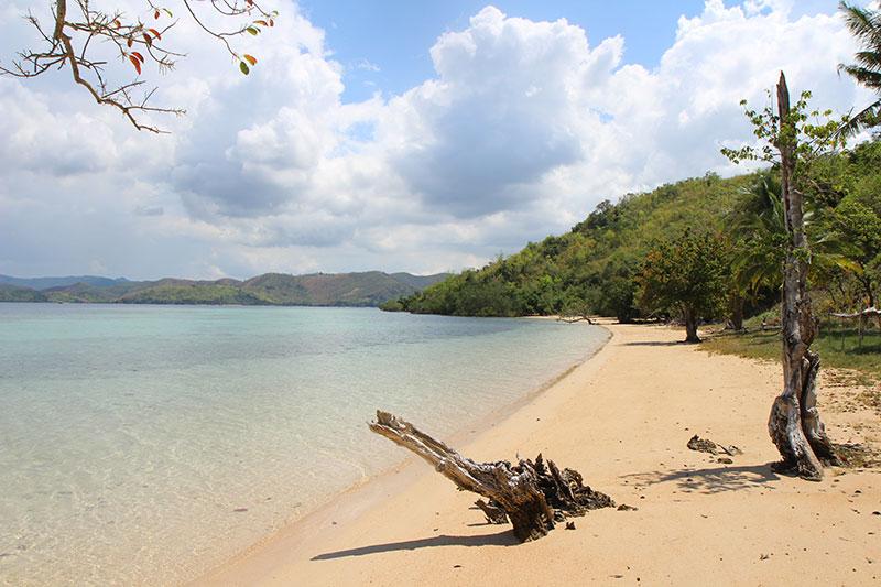 Découverte de plages pendant le Island Hopping à Coron